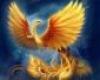 Portret użytkownika Mystic Bird