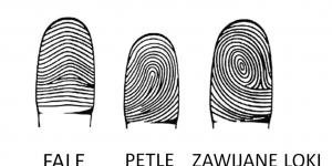 Jeśli Na Twojej Ręce Linię Układają Się W Literę M Innemediumpl