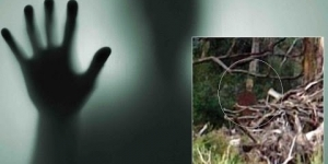 Is It A Real GHOST? Hiker Takes Creepy Picture In Rural Queensland, Australia