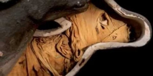 Egypt's animal mummy 'scandal' revealed