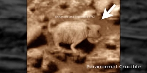 Prairie Dog Found On Mars?