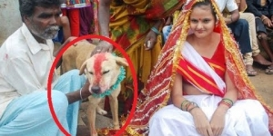 Indian Teenage girl marries dog in bizarre wedding ceremony!!
